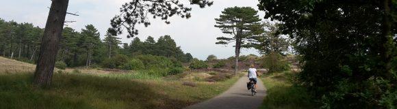 Fietsknooppunten fietsroutenetwerk Veluwe in voorjaar 2017 op de schop